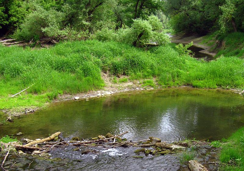 бочажок на речке