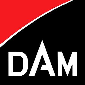 новый логотип ДАМ