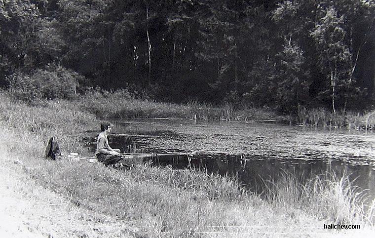 коровий пруд