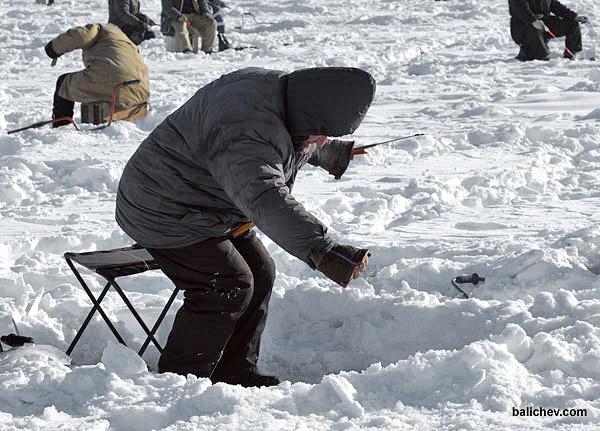 корюшка владивосток ловля со льда