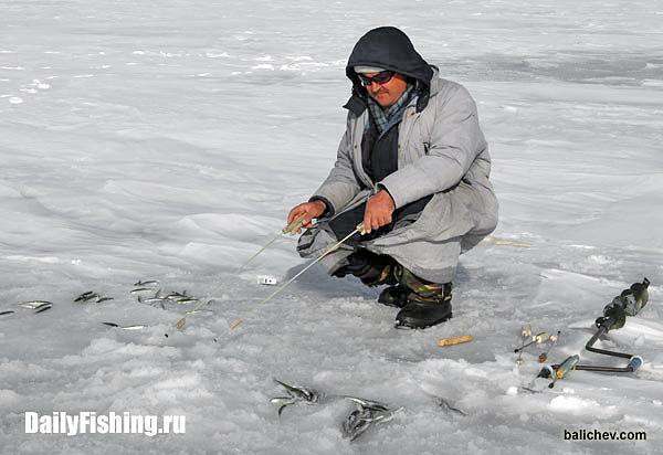 ловля корюшки владивосток