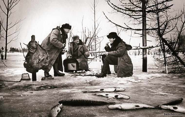 шескна щуки лед рыбалка