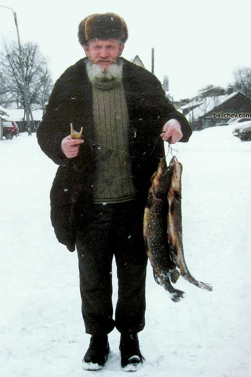 рыболов с уловом щук