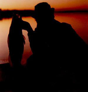 рыболов с судаком