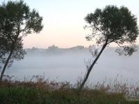 осенью на пруду туман