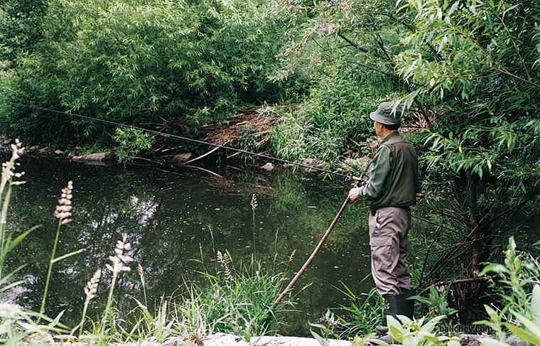 рыболов-поплавочник на старице