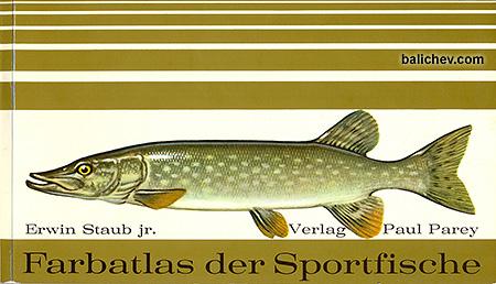 erwin staub farbatlas der sportfische