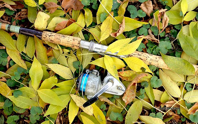 daiwa 503 on a spinning rod