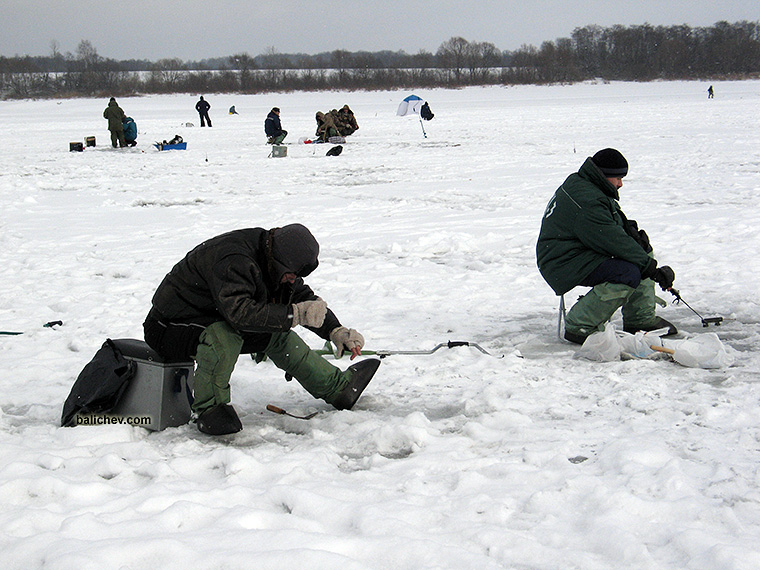 рыболовы на льду