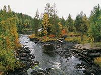 осенняя река в карелии