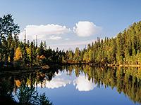 озеро в карелии осень