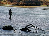 рыболов стоит в реке