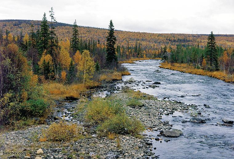 северная река пейзаж