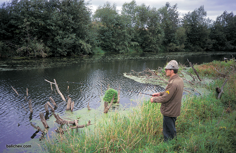дмитрий баличев на рыбалке