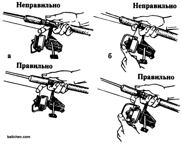 Иллюстрация из Справочной книги рыболова-любителя