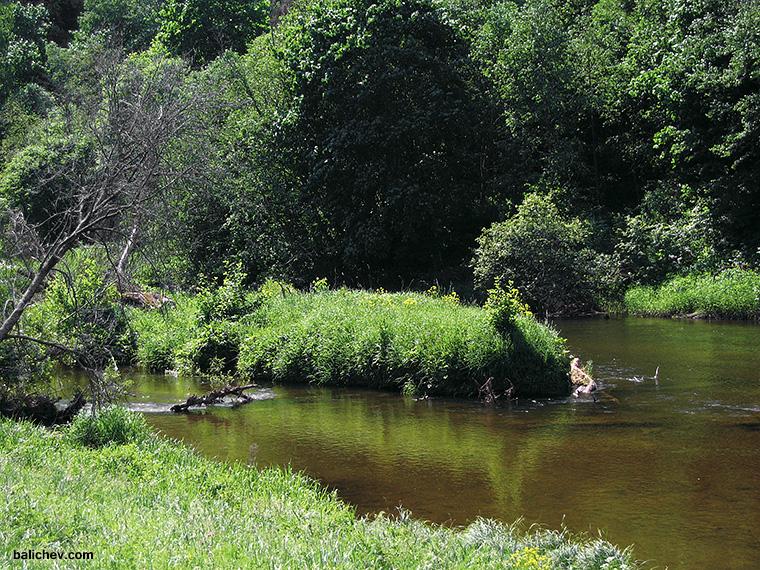 река летним днем, речной пейзаж